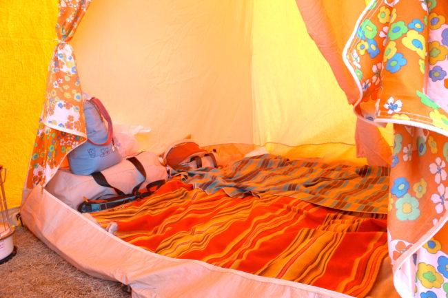 フレンチブルドッグキャンプ
