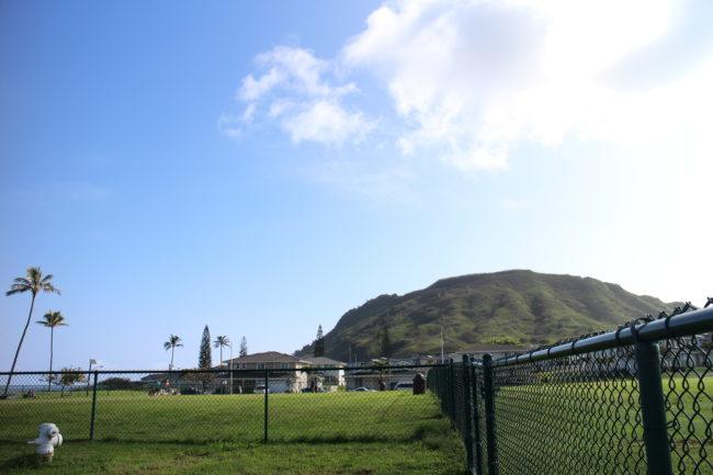 フレンチブルドッグ ハワイ