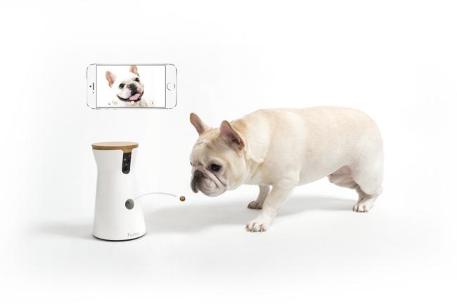 Furboドッグカメラ【French Bulldog Lifeトートバッグ付き】