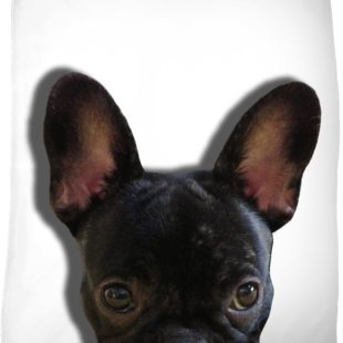 Peek a Boo Frenchie Blanket