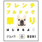 【お知らせ】ほぼ日(ドコノコ)コラボ企画「フレンチブルドッグ祭り」開催!
