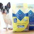 【実食レポート】米国ペット専門店シェアNO.1「BLUE」!フレンピーが食べてみた