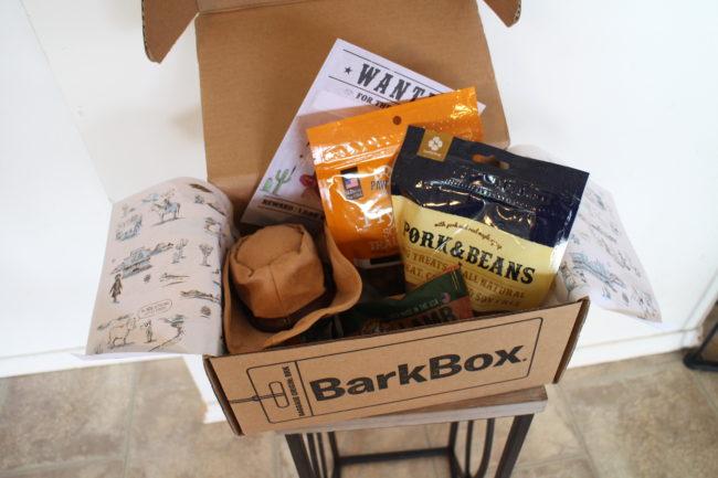 フレンチブルドッグ BarkBox