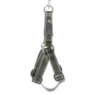 Green Leather Dog Harness Strap