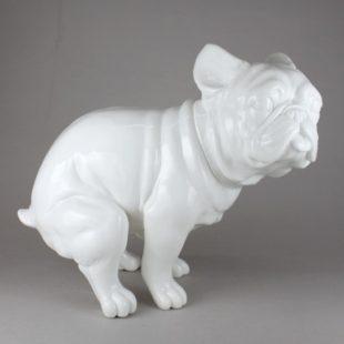 いきむ犬(FBL限定カラー)
